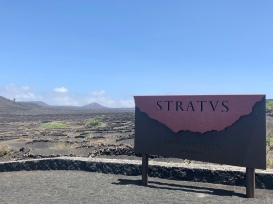 Stratvs Vineyards