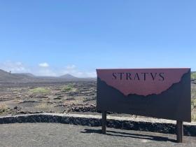 Stratvs Vineyards