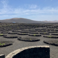 Around the World - Lanzarote (part 2)